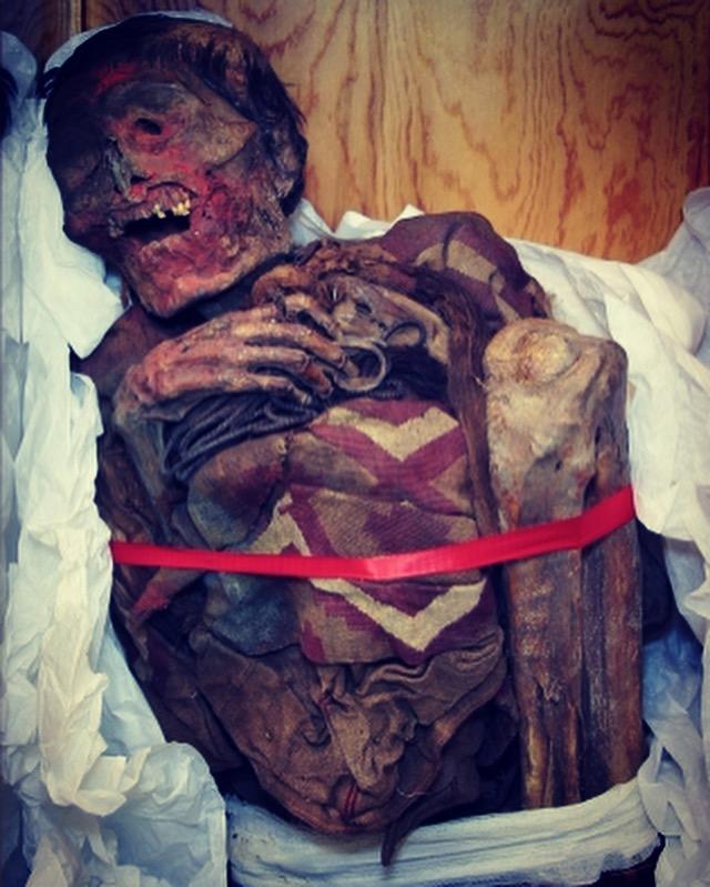 peru, mummy, moesgaard museum, de etnografiske samlinger, ethnography, collections, museum, aarhus, denmark, halloween