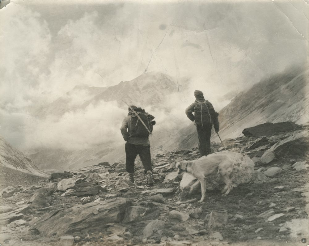 nuristan, klaus ferdinand, edelberg, afghanistan, ethnography, anthropology, photography, dogs, collection