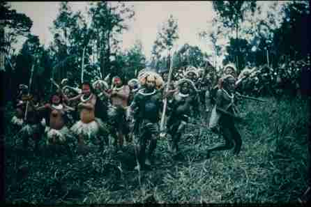 Papua New Guinea, New Guinea, Australia, Oceania, Collections, Bones, tribe, Moesgaard Museum, momu, ethnography, exploration, Jens Bjerre, Anthropology, expedition